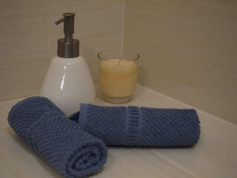 Bathroom - essentials are provided. Soaps, shampoo, towels, hairdryer