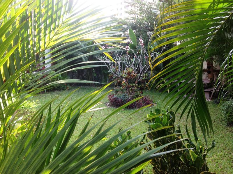 View to garden....