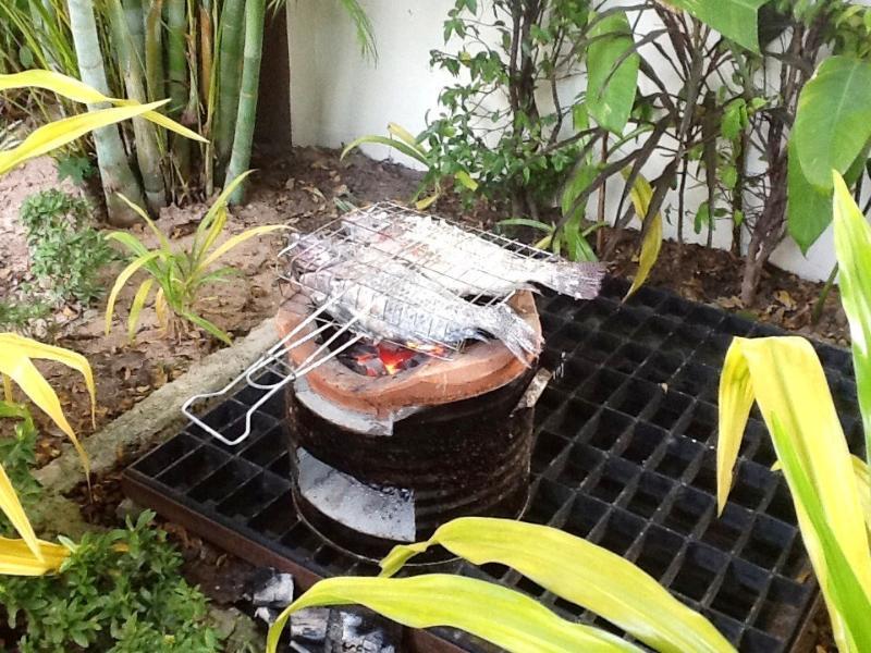 Thai barbecue in garden....