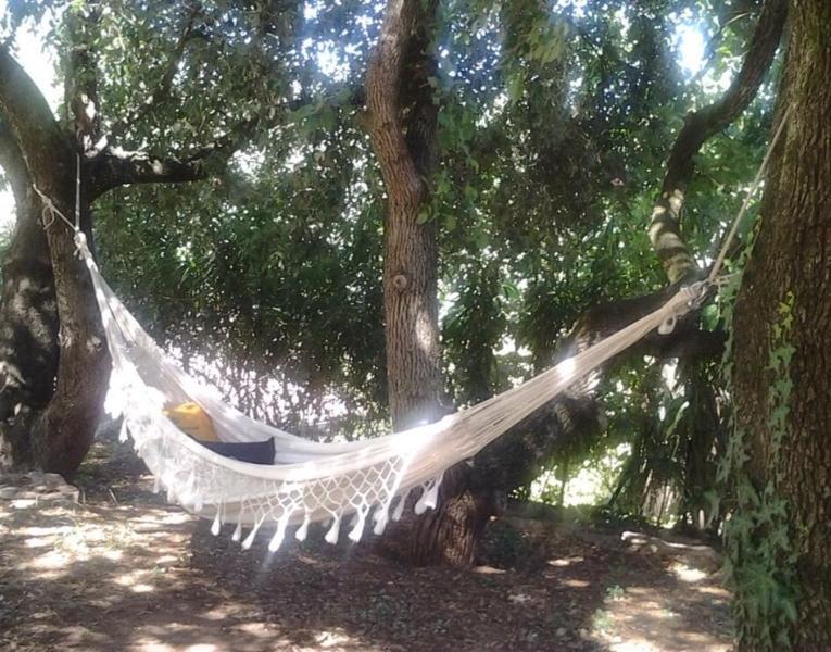 Relax under the Oaks corner