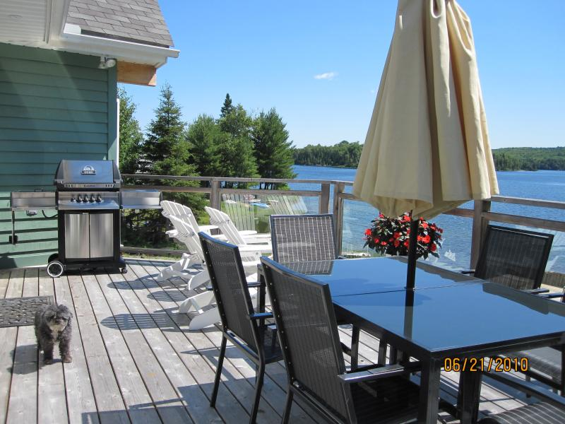 BBQ and elevated deck overlooking the beach & lake