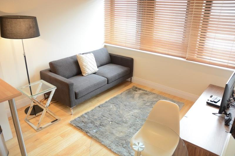 Premier Place one bedroom apartment, vacation rental in Littlemore
