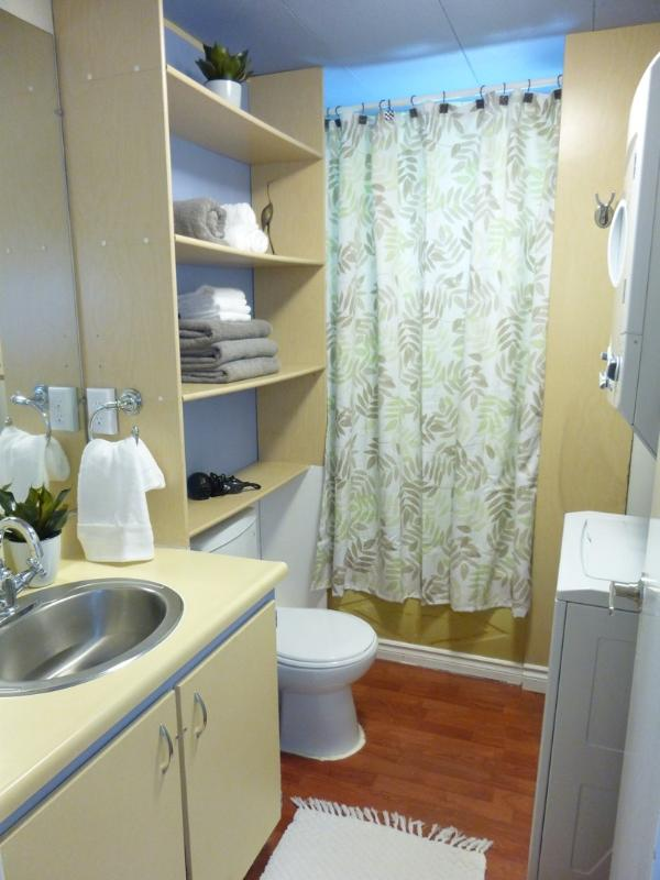 The unit includes an in-suite washer and dryer in the full bathroom.