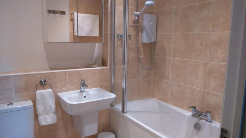 O família banheiro com banheira e chuveiro sobre ele