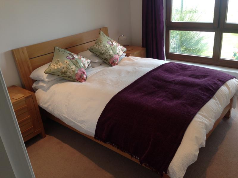 Brights and spacious main bedroom