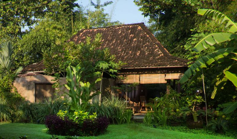 Bungalow and the garden
