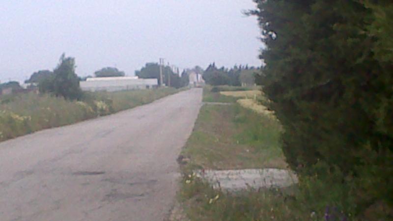 camino a la playa ( Frente a Torre Nueva)