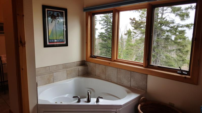Whirlpool for two with tree top views