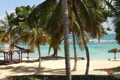 superbe plage lagon de la résidence avec ses carbets
