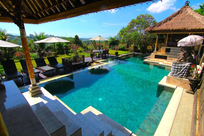 Beautiful Pool And Surroundings