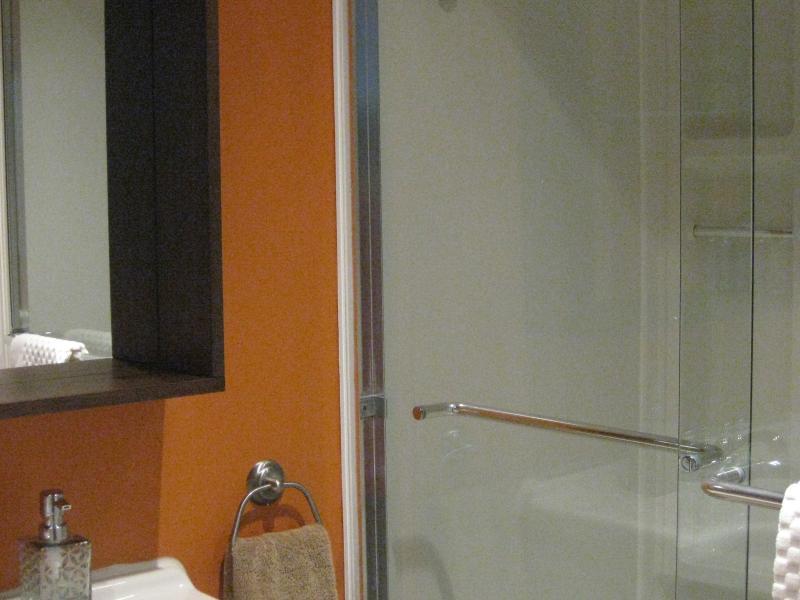 Salle de bain sous-sol / Basement Washroom