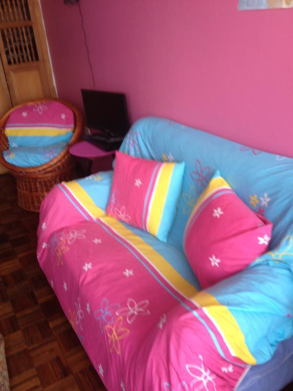 Sofá nuevo lleno de colores/ almohadas. New Sofa &  ratan armchair, lateral tables TV, DVD & Movies
