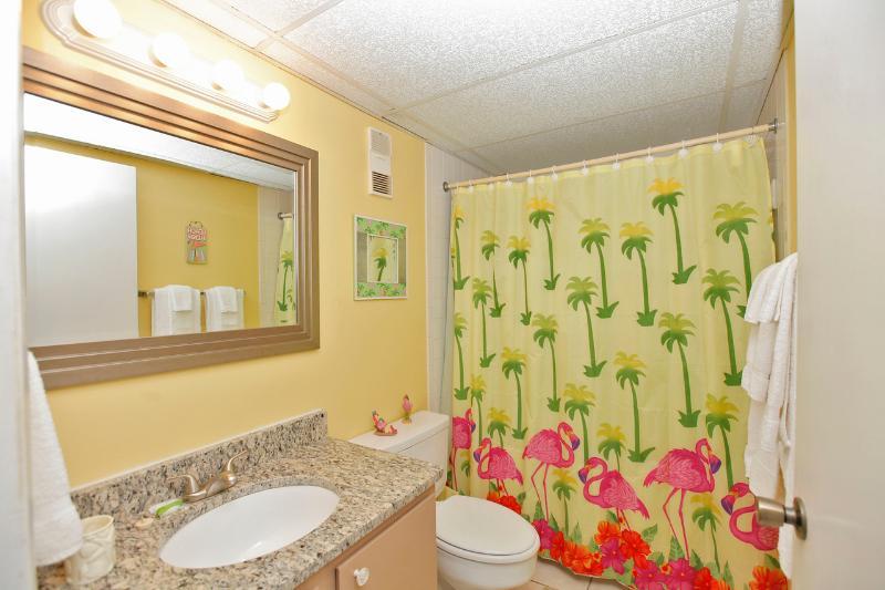 2ème salle de bains