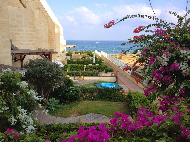 Sea & Sun Complex Tel Aviv 100 meters walking distance from the sea, holiday rental in Ramat Hasharon