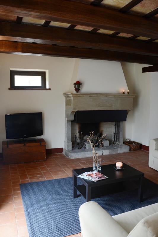 the living room fireplace Datrì