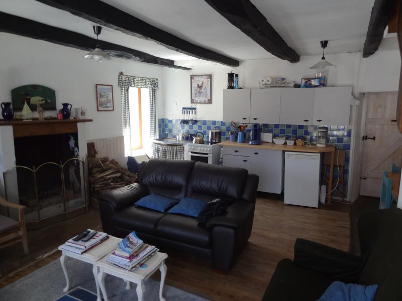 Wohnen mit Küche und Essbereich, Kamin - TV-WiFi