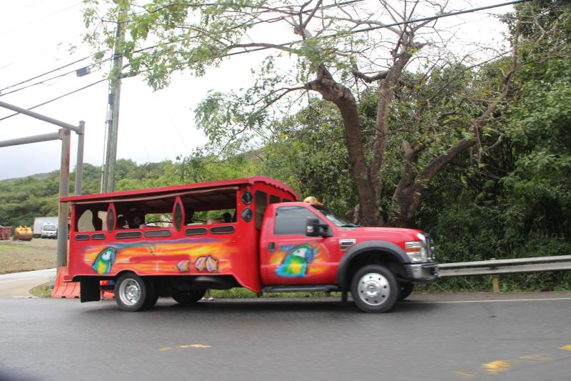 Not renting a car.  No problem! Take the safari into Downtown Charlotte Amalie