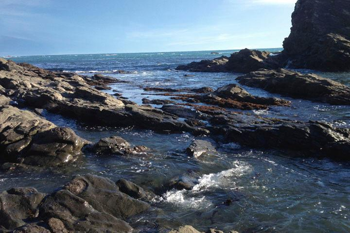 Pozas de marea