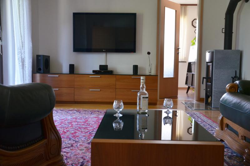 Apartment with balcony, holiday rental in Zirovnica