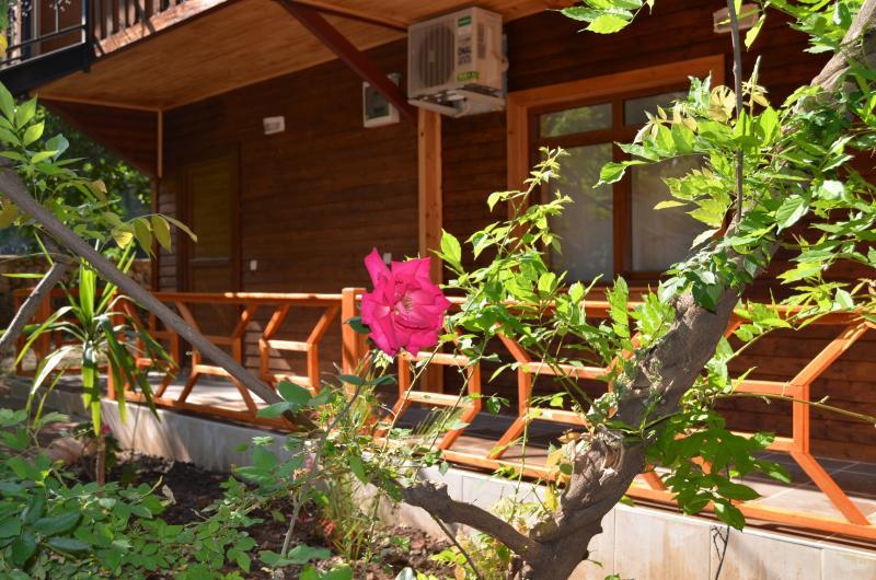 balkon, bahçe
