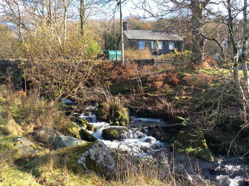 Erw Coed next to mountain river.