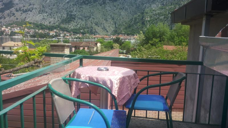 Apartments witha view old town Kotor, vacation rental in Radovici