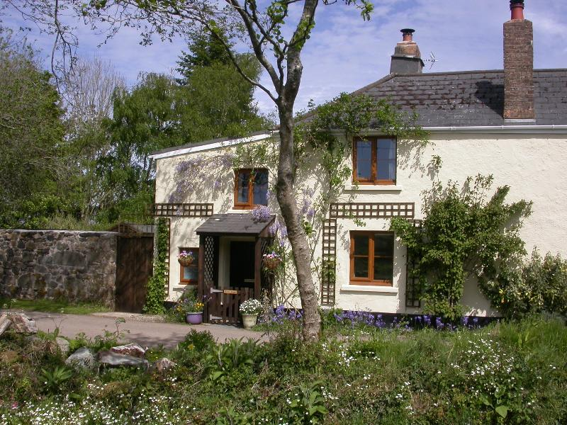 Little Moor, Dartmoor cottage, holiday rental in Okehampton
