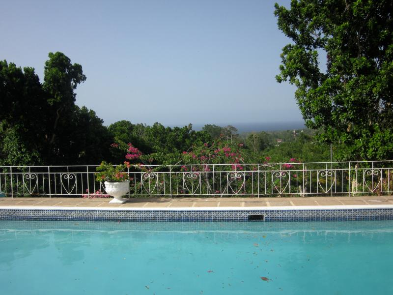 View from swimming pool deck