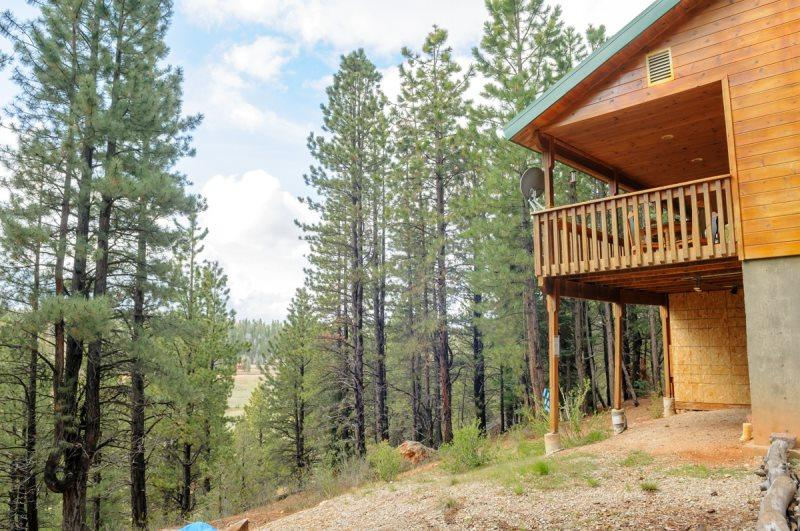 S`more Fun Cabin - great location in Strawberry and perfect homebase for activit, holiday rental in Long Valley Junction