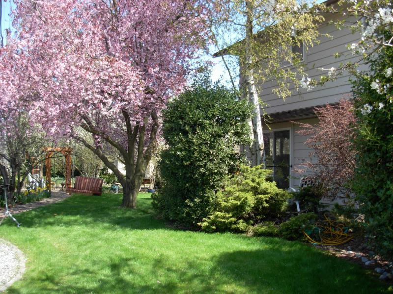 Your personal yard garden