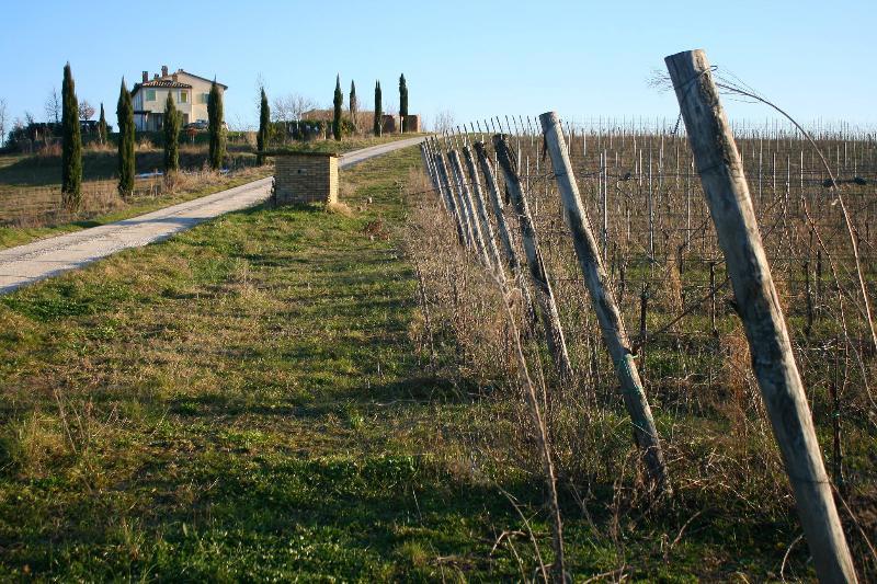 Casa Marna-Tenuta Recchi Franceschini, aluguéis de temporada em Patrignone
