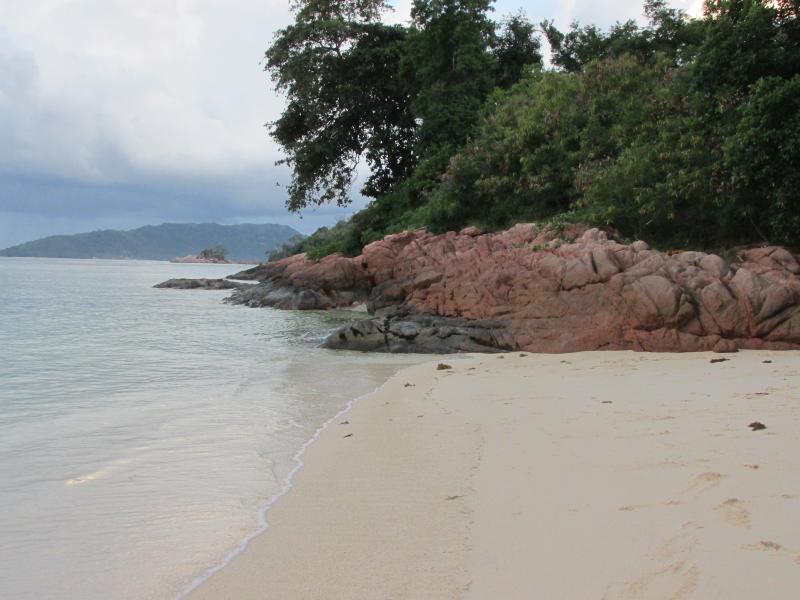Nearby beaches within walking distance