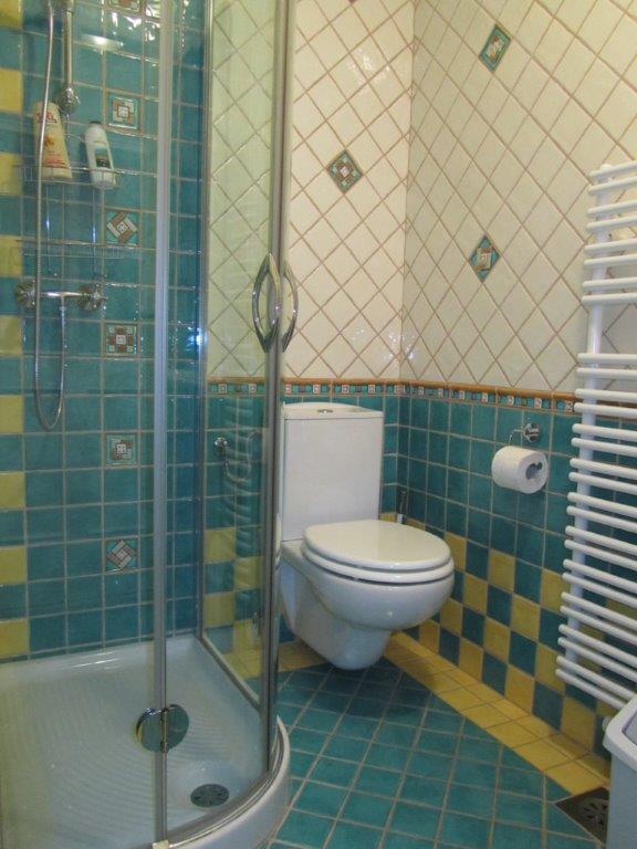 Salle de bains 2 - douche