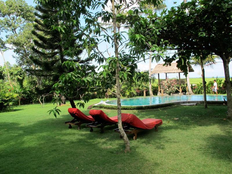 La piscina con longchairs sotto gli alberi