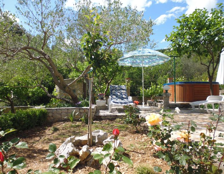 A place to relax under the olive tree; Whirlpool in the background