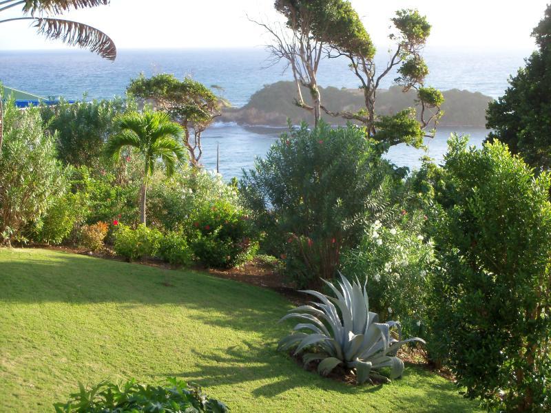 Una vista di Hodges bay e isola dalla scogliera sul mare