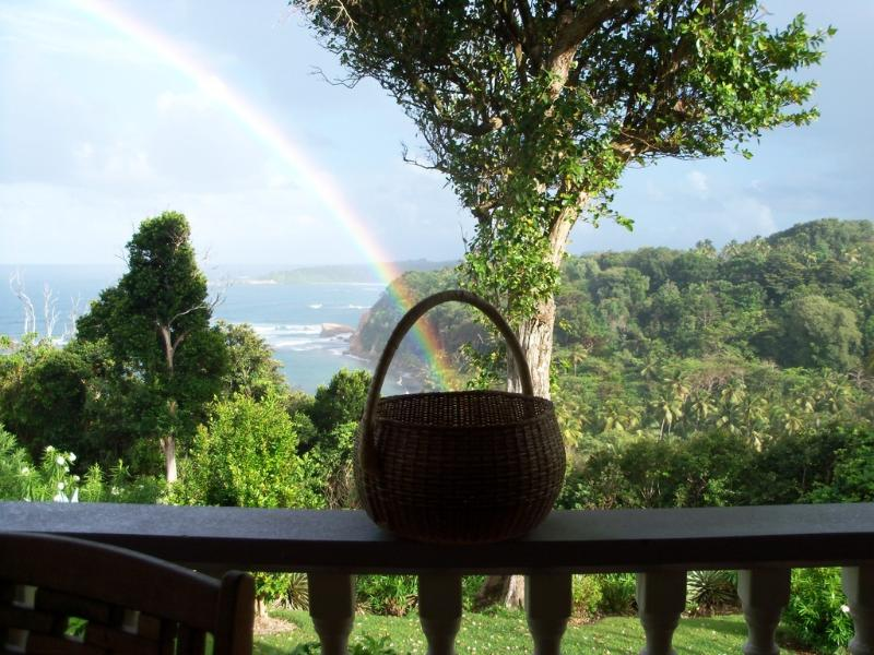 Sea Cliff Cottages, self catering seaside comfort, Studio and two bedrooms, holiday rental in Dominica