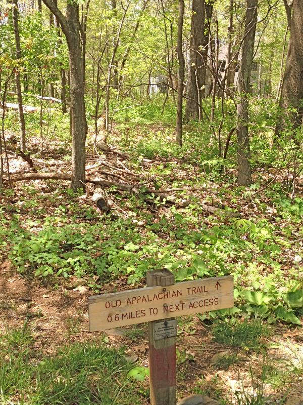 De oude Appalachian Trail kruist de voorkant