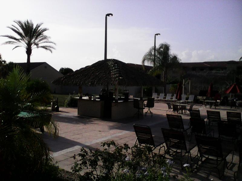 Regal Palms,The Pool side Bar and Seating