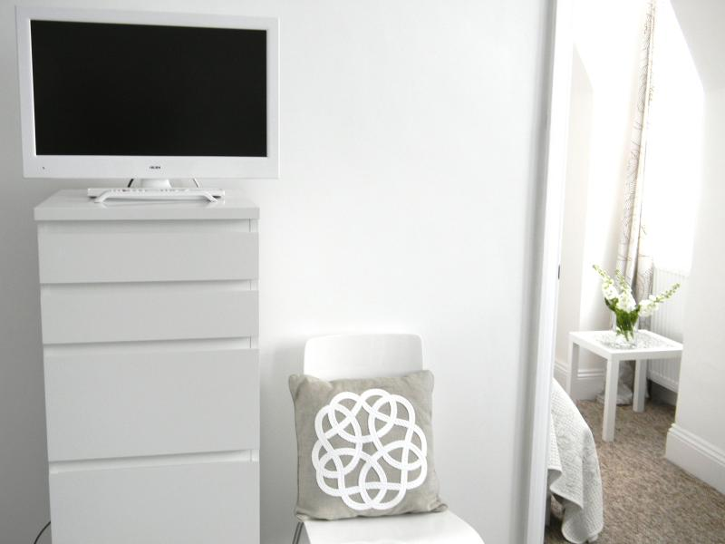 TV and storage in main room
