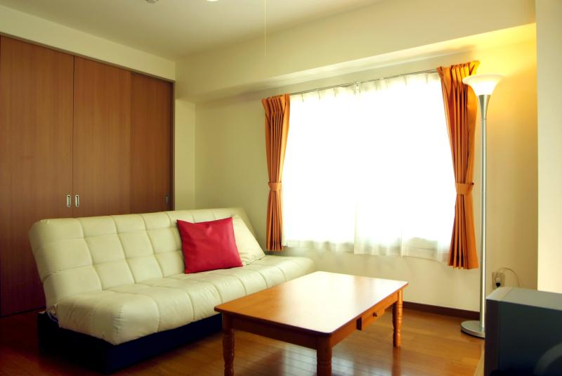 Living Room with Air Conditioning and TV