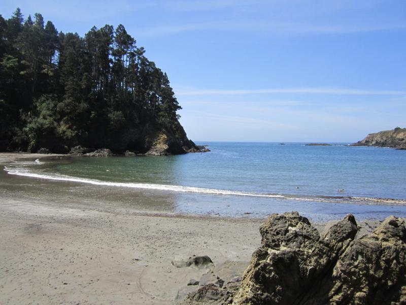 Mendocino, Sea Views, Stroll to State Park, Beach, vacation rental in Mendocino County