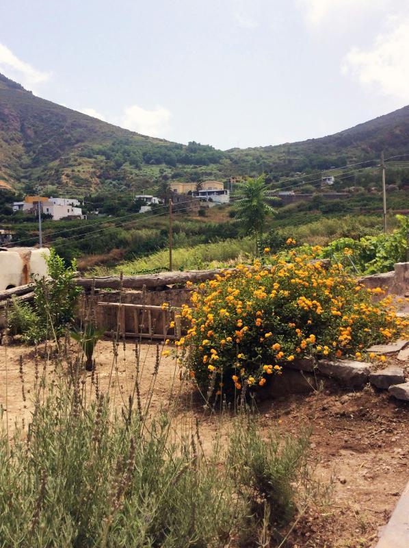 Garden-Garden