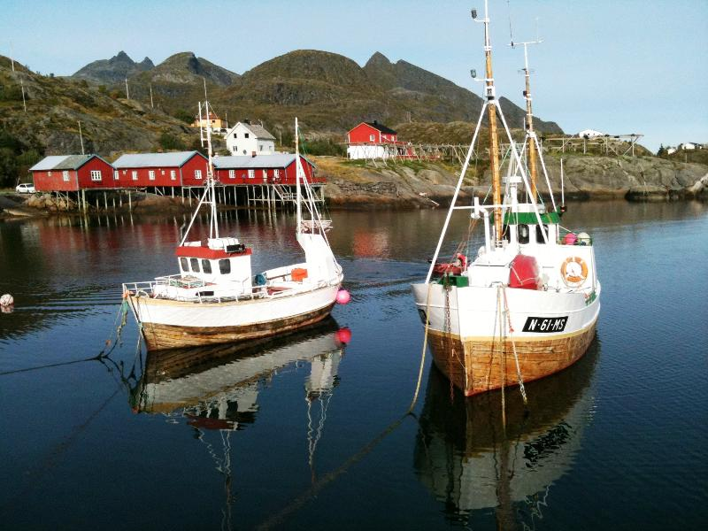Log cabin in the fishing village Tind at Lofoten, holiday rental in Nordland
