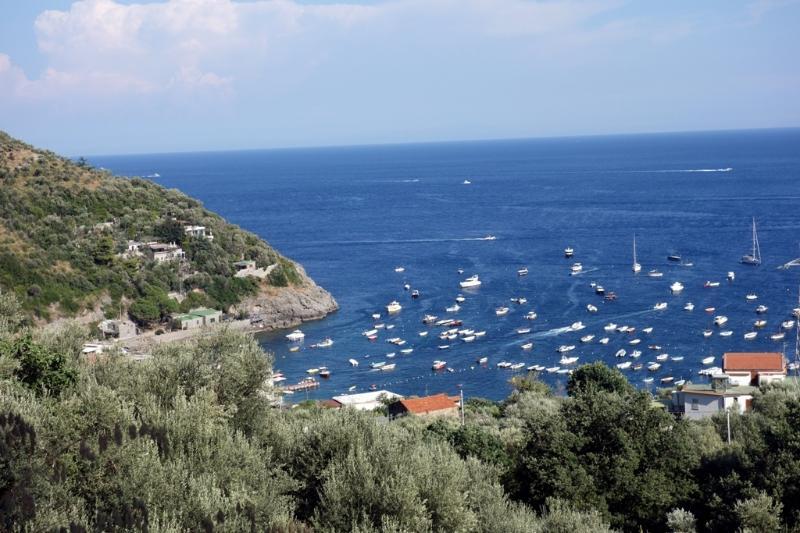 Marina del cantone