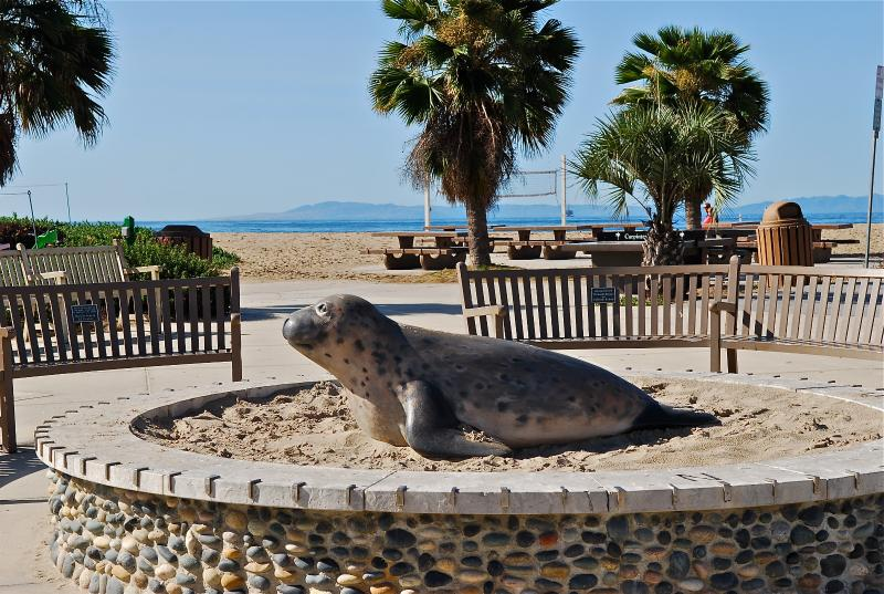 Sandyland Sea Lion, next to the Snow Cone stand, welcomes beachgoers