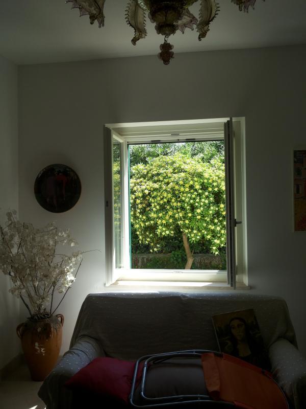Scorcio di una finestra della sala