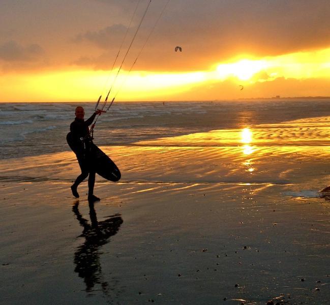 Evening Kite