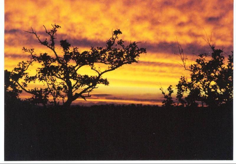 Puesta de sol sobre Kintyre, tomado de Kilbride