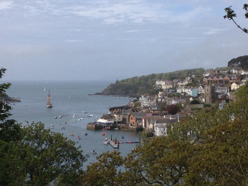 View of Fowey from the other side of the river, above Bodinnick